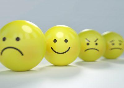 la gestion des émotions et des comportements